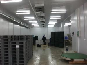 Система кондиционирования и вентиляции в производственном цехе
